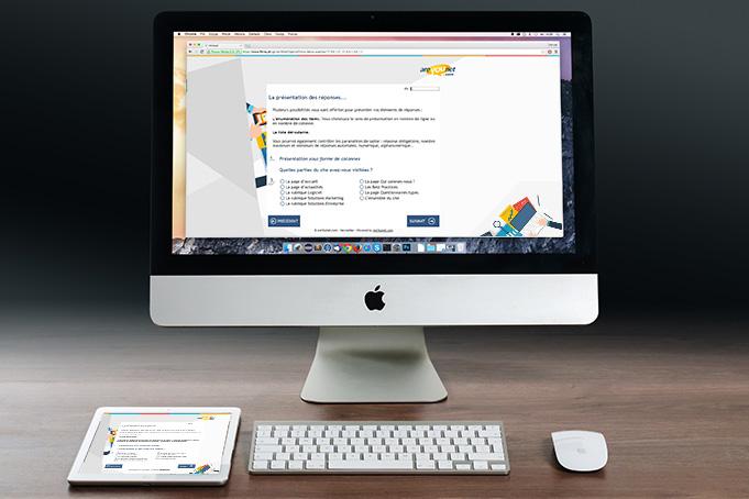 Mise en page du questionnaire en ligne
