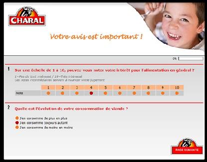 Personnalisation graphique du questionnaire